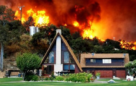 Deadly Wildfires out West