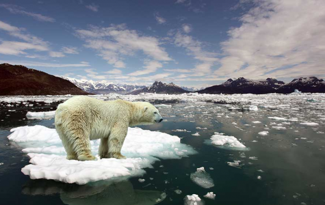 Climate Change…what is it?