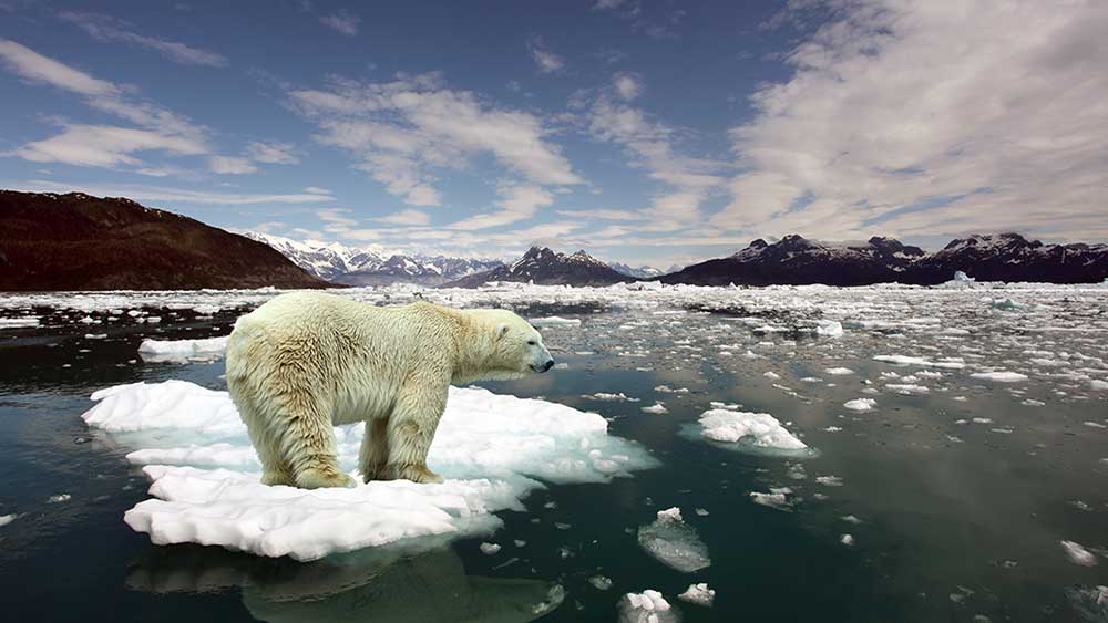 https://kids.nationalgeographic.com/explore/science/climate-change/