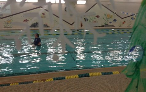 Swim Team – Do You Want To Join?