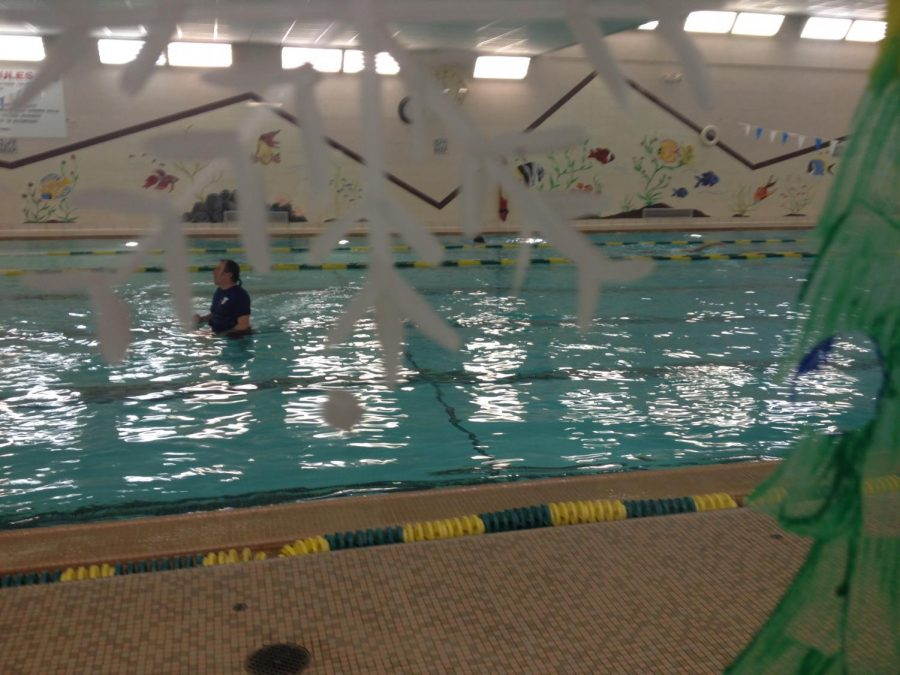 YMCA+Livonia+pool