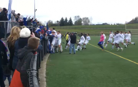 Detroit Catholic Central High Soccer Wins State Championship