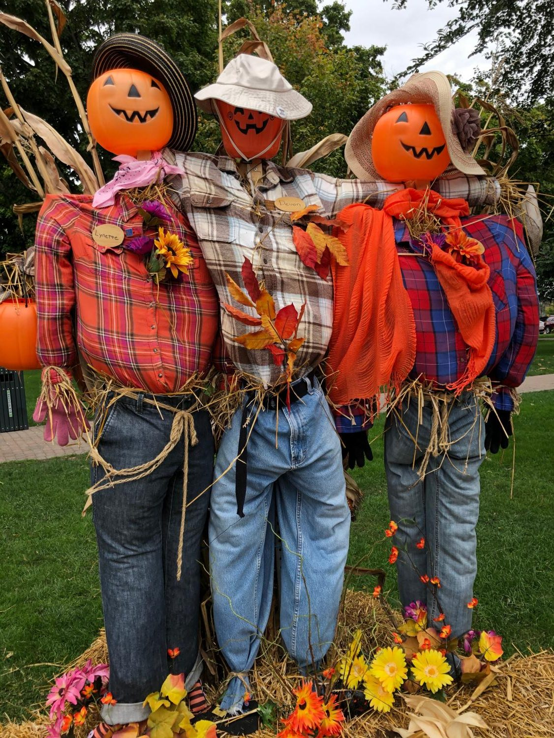Scarecrows in DTP.