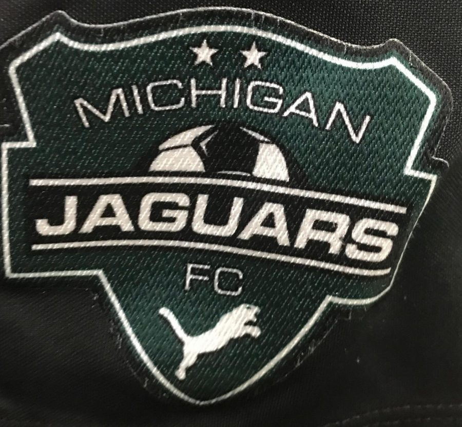 Michigan+Jaguar+logo.