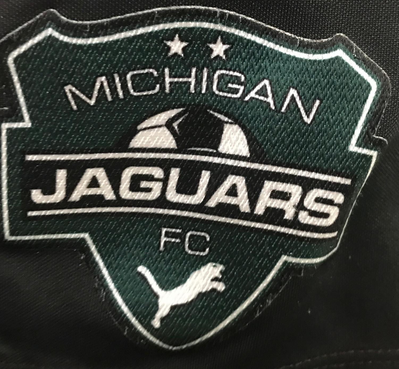 Michigan Jaguar logo.