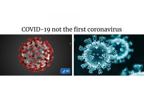 COVID-19-Not the First Coronavirus