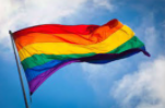 The rainbow flag is the symbol for the community and all sexualitys and genders.