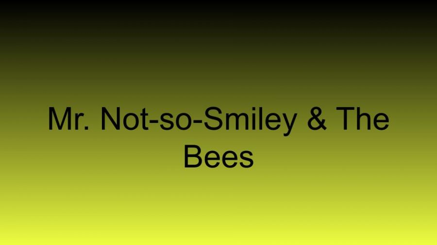 Mr. Not-So-Smiley & The Beezzzz
